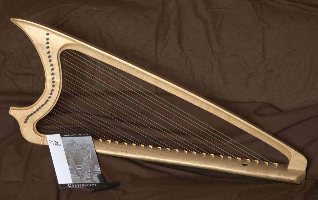 Bray Harp, Gothic har